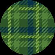 Paid Tartan Pattern Image